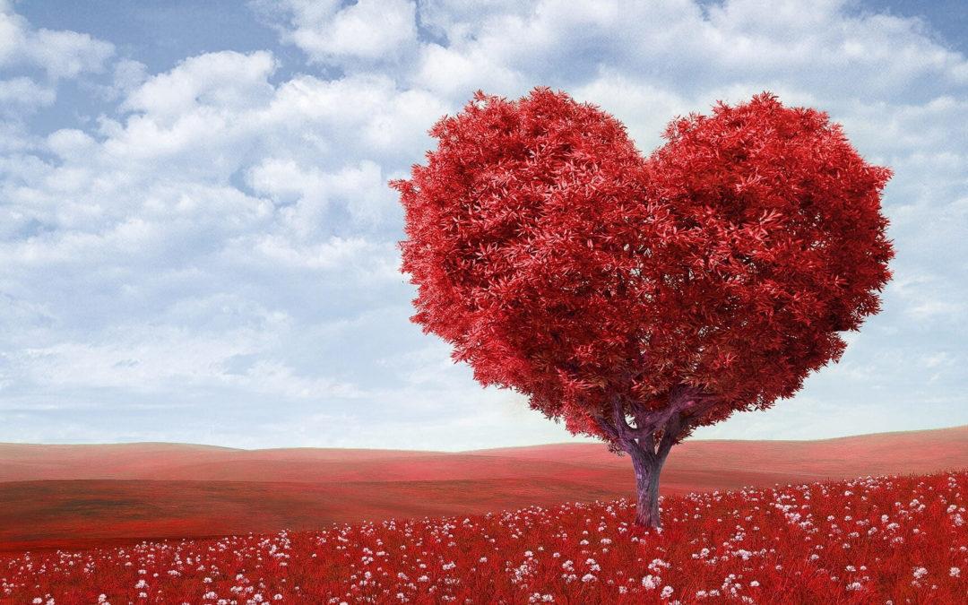 Despedir a un ser querido con amor